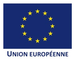 Logo-Union Europeenne
